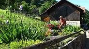 Auf Schusters Rappen durch Liechtenstein - Teil 12 Die Gemeinde Planken