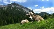 Auf Schusters Rappen durch Liechtenstein - Teil 14 Malbun
