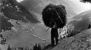 Die Berglandwirtschaft in Liechtenstein Teil 2